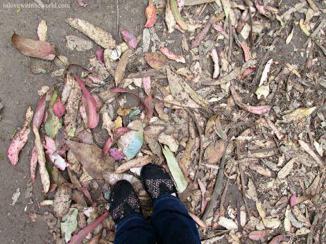Lovers Lane Feet |inlovewiththeworld.com