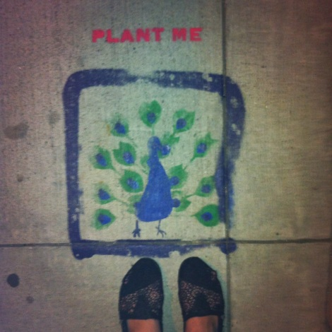 Plant Me | Feet Friday | inlovewiththeworld.com