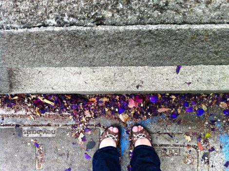 Purple Flowers @ Coit Tower | Feet Friday  inlovewiththeworld.com