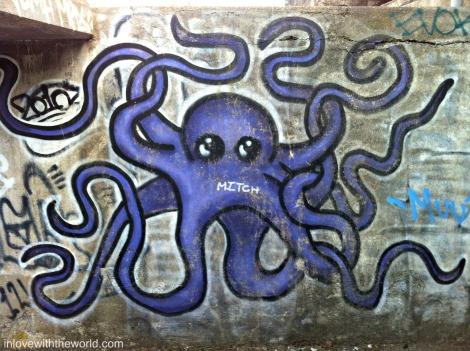 Octopus | inlovewiththeworld.com