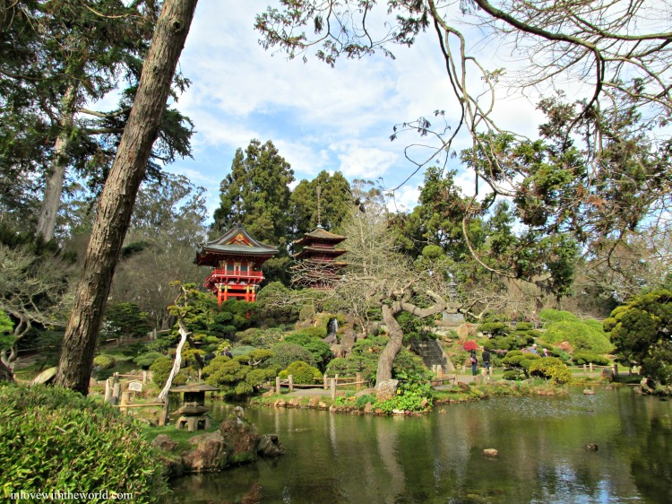 Japanese Tea Gardens | inlovewiththeworld.com
